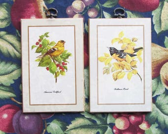Bird Wall Art | Wildlife Art Prints