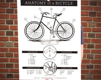 Deluxe Anatomy of a Bike Poster
