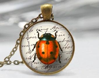 Lady Bug Pendant, Ladybug Art Necklace, Lady bug Jewelry, Beetle Art Pendant, Bug Art, Ladybug Art Portrait, Insect Art, Bronze Silver, 101