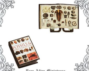 FOSSILS Dollhouse Miniature Book – 1:12 Science Miniature Book on Fossils Paleontology Geology – DIY Earth Science Book Printable DOWNLOAD