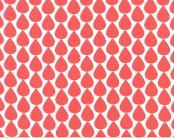 SUNDROPS, Corey Yoder, Moda Fabrics, 29013-17, Sundrops fabric, Sundrops Collection, Little Miss Shabby