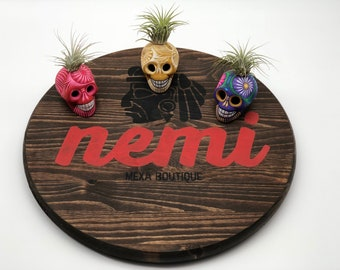 Skull Air Plants, Skull Heads, Air Plants, Hand Crafted, Mexican Art