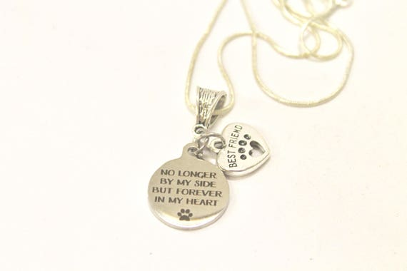 No Longer By My Side But Forever In My Heart Silver Necklace, Loved Pet Memorial Jewelry Gift For Her, Sympathy Pet Remembrance