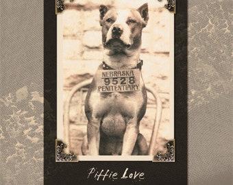 Pit Bull Terrier Dog Art Giclee. Does NOT come framed