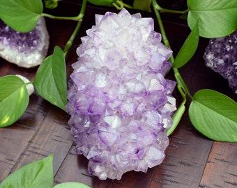 XXL Lavender Amethyst Stalactite Hedgehog Cluster