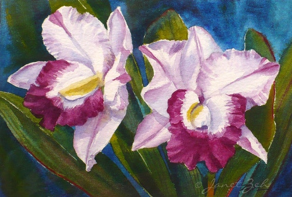 Tropical Flower Painting Magenta Orchids Original Watercolor