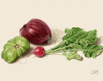 Radish Hierloom Tomato Red Onion Still Life | Kitchen Art | Tiny Art