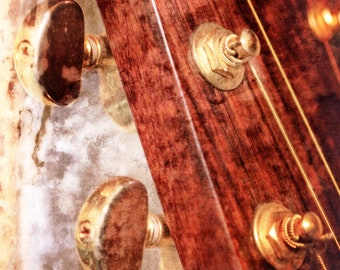 Breedlove is a photographic art print of the headstock of a guitar