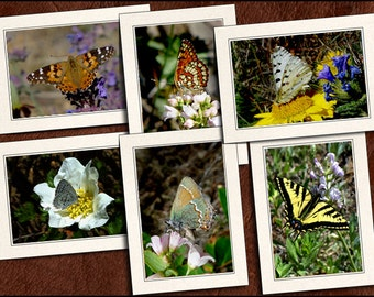 6 Butterfly Photo Greeting Cards Handmade - Blank Greeting Cards With Envelopes - Butterfly Note Cards Handmade - 5x7 Note Card - (GP59)