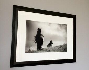 SALE - Framed black and white horse photo, framed equine art, black and white horse photography, horse decor, gift for horse lover, horse