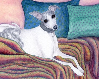 Greyhound whippet dog 8x10 print - at home