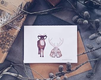 Deer and Tortoise Greeting Card