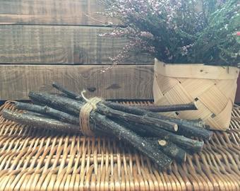10 Pcs Pieces  10.5 inch Long Stright Cut Black Currant Sticks Twigs Branches Crafts Pet Food Rabbit Food Supplies
