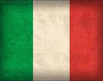 VINTAGE Italy Flag Sticker (old distressed decal italian)