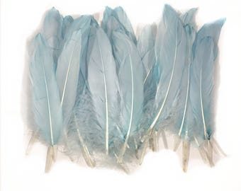 6-8 inch Blue Died Natural Goose Feathers