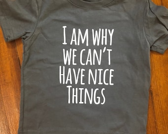 Toddler Nice Things Tee - I Am Why We Can't Have Nice Things