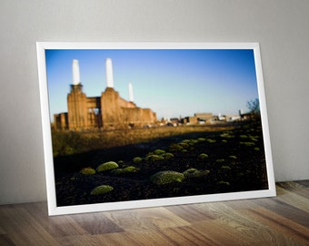 Pink Floyd's Battersea Power Station and Moss Balls. London. City Skyline Large Oversized Photo Artwork
