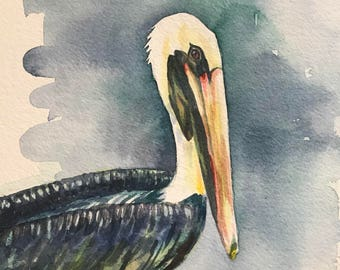 Watercolor of a Brown Pelican
