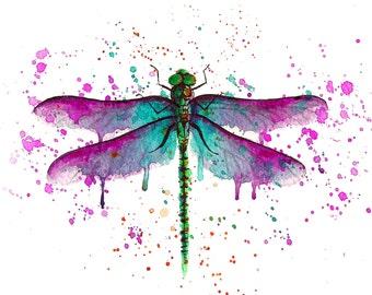 DRAGONFLY watercolour painting illustration original or print watercolor libelula