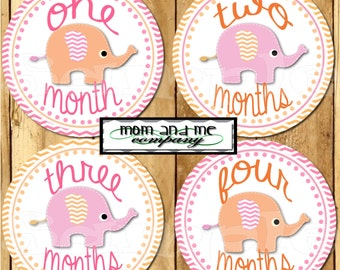 Elephant Baby Girl Monthly Stickers Baby Stickers Baby Shower gift onepiece stickers infant month stickers pink orange milestone stickers