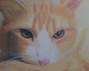 Custom Chalk Pastel Drawing: Jasper
