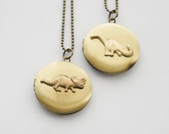 Dinosaur Locket, Dinosaur Necklace, Choose your locket, Dinosaur Locket Necklace, Triceratops necklace, Apatosaurus Locket