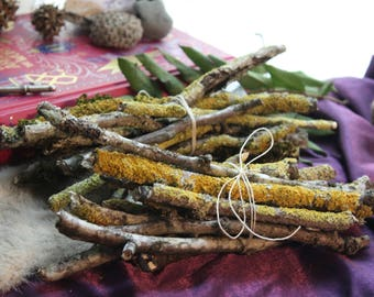 Rustic Bundle of Lichen Covered Twigs/Bundle of Sticks/Beltane Fire/Pagan Home Decor/Yellow Lichen/Moss covered Sticks/Rustic Christmas