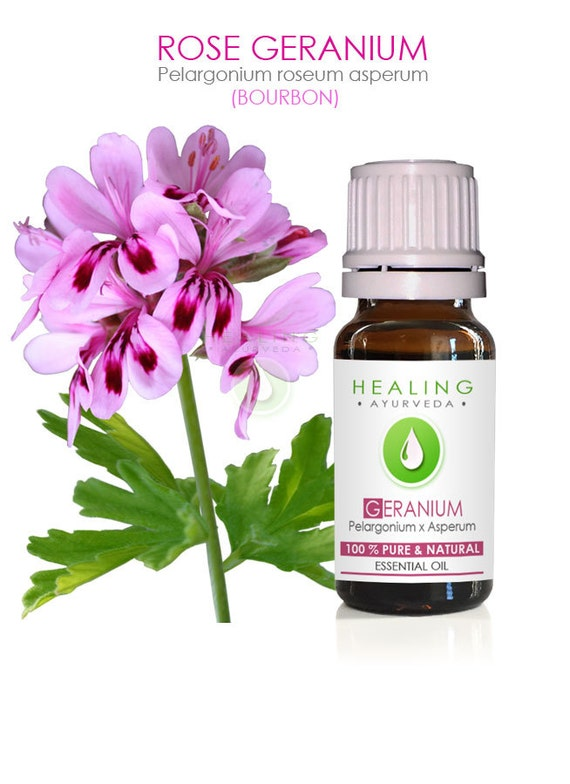 Rose geranium essential oil- 100% pure bourbon geranium oil- Pelargonium graveolens - Skin care - DIY Bath & beauty oil- Huile de Géranium