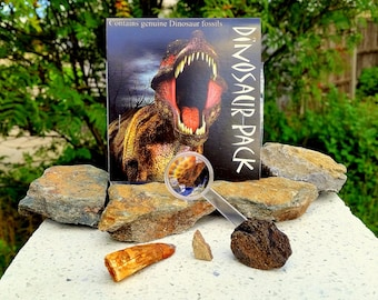 Dinosaur Fossil Pack [FS9400]