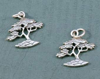 Sterling Silver - Cypress Tree - Bonsai - Tree Charm - 20x20mm - Sold Per Piece