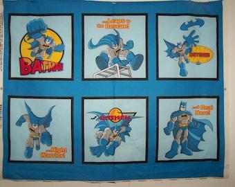 Batman Panel With Coordinating Fabric