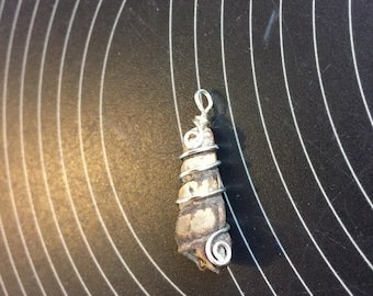 Fossilized Shell Pendant