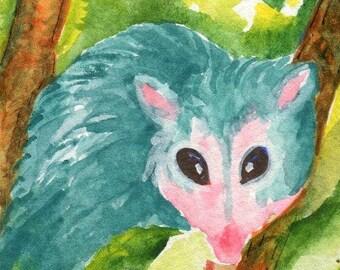 ACEO Original Possum Watercolor Painting. Teal Opossum  Animal Art Card