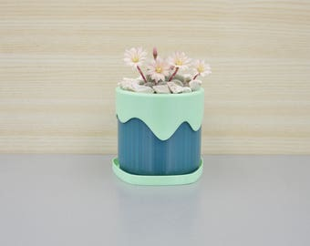 Succulent planter/Plant pot / desk organizer / 3D printed planter /modern planter/ Vase in two colors/ eco product / gift for him