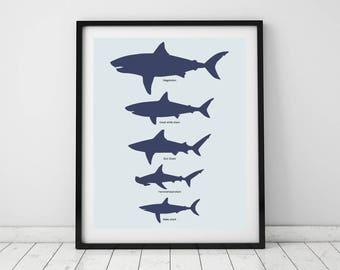 Superior Shark Chart, Art Prints, Shark Decor, Minimalist Animal Art, Shark Toddler  Room