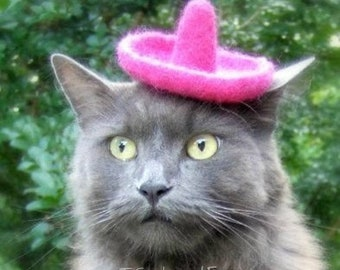 Sombrero for Cats or Dogs - Wool Felted Hat - Fancy Pink