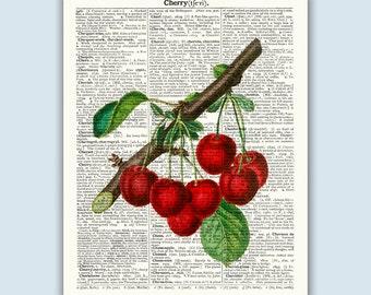 Cherry Poster, Botanical Print, Fruit Art, Kitchen Art, Cherry Art, Kitchen Print, Cherry Decor, Kitchen Wall Art, Dictionary Art