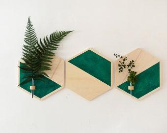 Hanging Planter,wall planter wood,hanging planter,wood hexagon,hexagon,