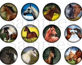 Horse Magnets Pins Party Favors Magnet or Pin Gift Sets
