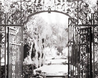 Italian Garden Photography - Il Giardino, Nature Photography, Black and White Wall Decor, Sepia Photograph, Large Wall Art