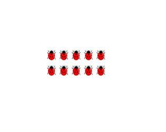 10 miniature ladybugs / temporary tattoos / tattoos / tattoo / fake tattoo / black and Red / ladybug