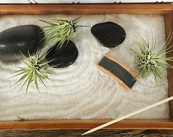 Tillandsia Zen Garden by Zentilly©