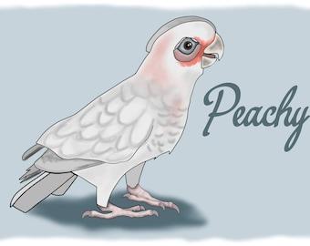 In Memory of Peachy