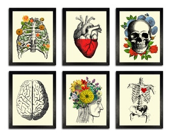 GIFT SET! Six Colorful Anatomy Art Prints, 8 x 10 Anatomy Posters, Wall Decor Set, Anatomical Home Decor Wall Art, Gift set for Husband
