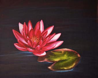 Pink Water Lily - Original Oil Painting