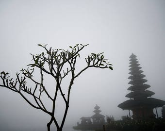 Trees and Statues on a Foggy Day , Bali Photography, Travel Photography, Wall Art, Fine Art Print