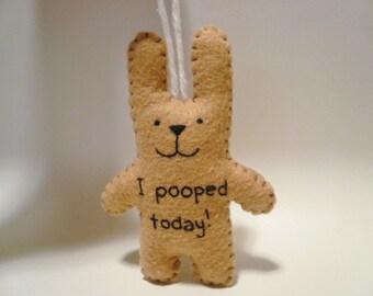 Je pooped aujourd'hui drôle cadeau Noël ornement décoration gag, merde, PET, poo