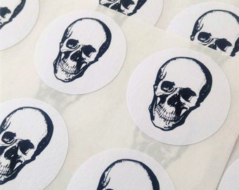 Anatomical skull stickers, Skull anatomical stickers, Stickers anatomical skull, Anatomical stickers skull, Skull stickers anatomical, #1017