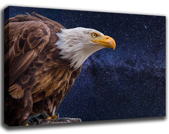 Bald Eagle Bird Art Print Poster Canvas/Glossy HD Canvas, Gallery Wrap Or Glossy Poster