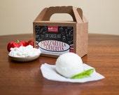 Mozzarella & Ricotta DIY Cheese Kit- 8 batches (cow's milk)